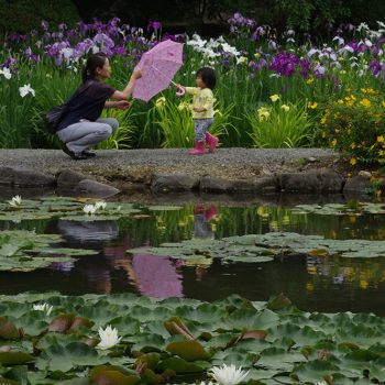 銅賞:ピンクのパラソル 撮影:官野哲