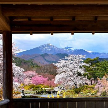 銀賞:渡辺勝雄 春の庭